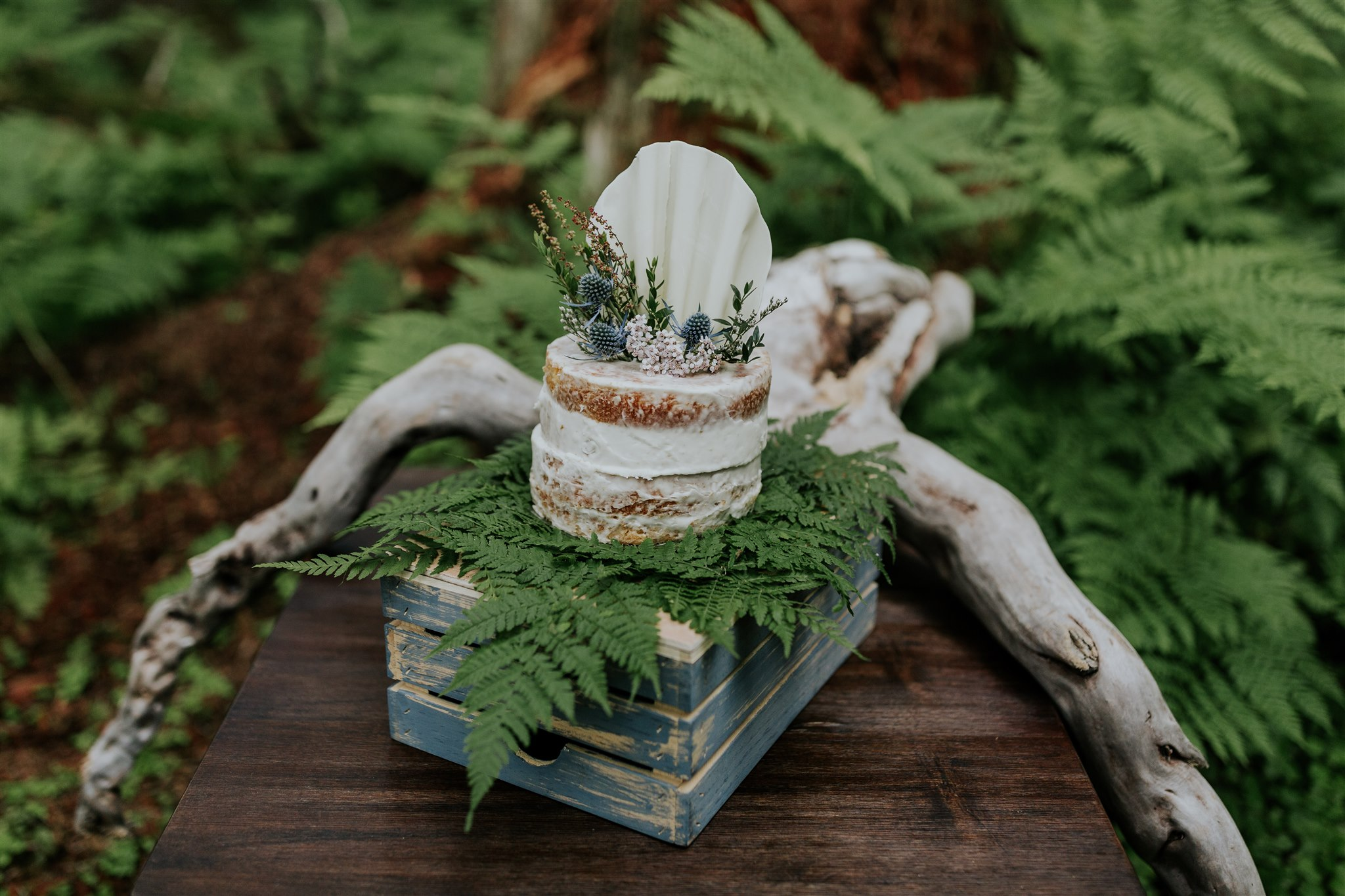 alaska elopement cake woodsy forest ferns
