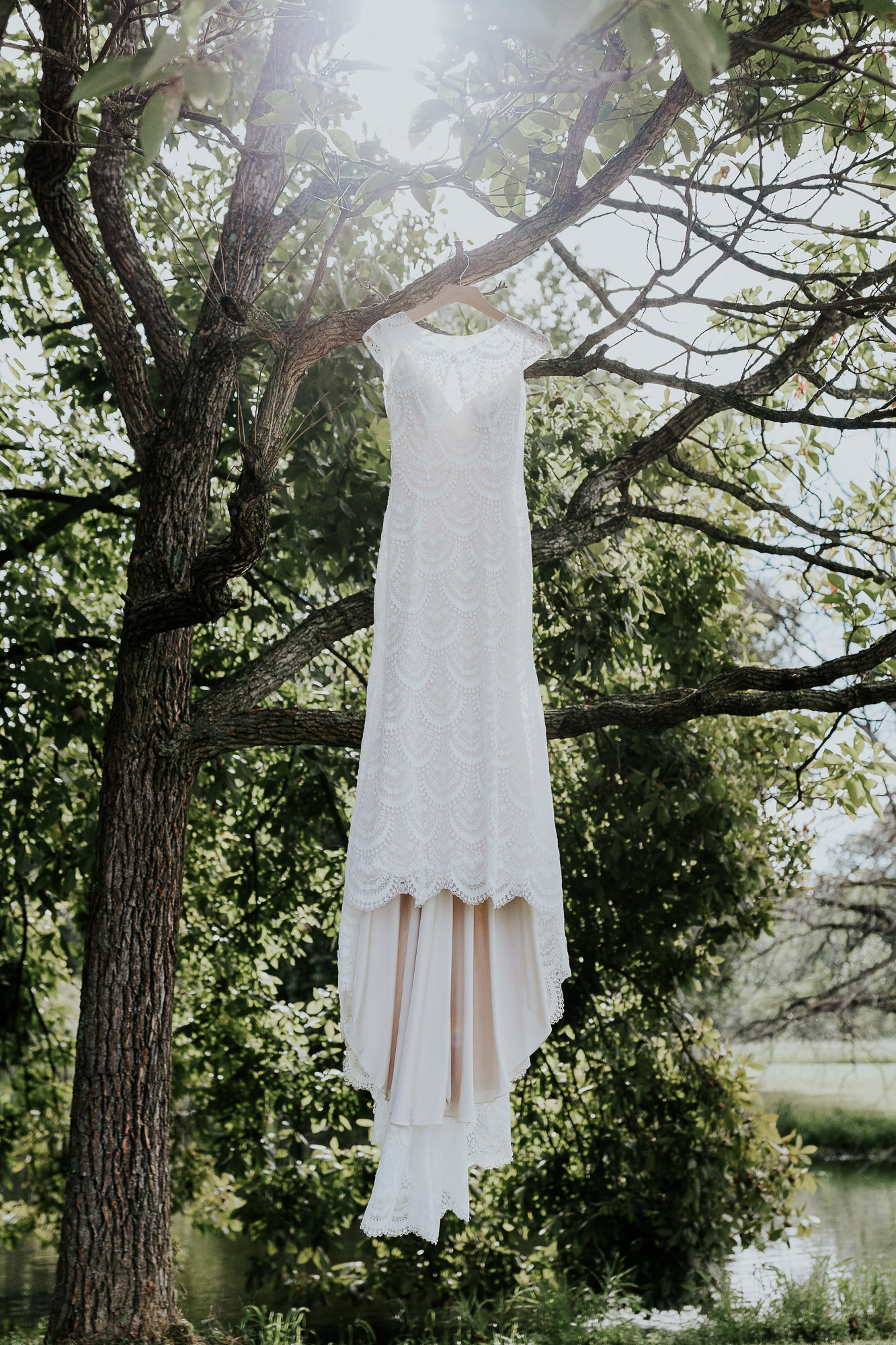 adventurous outdoor wedding southern indiana midwest wedding photographer dress tree