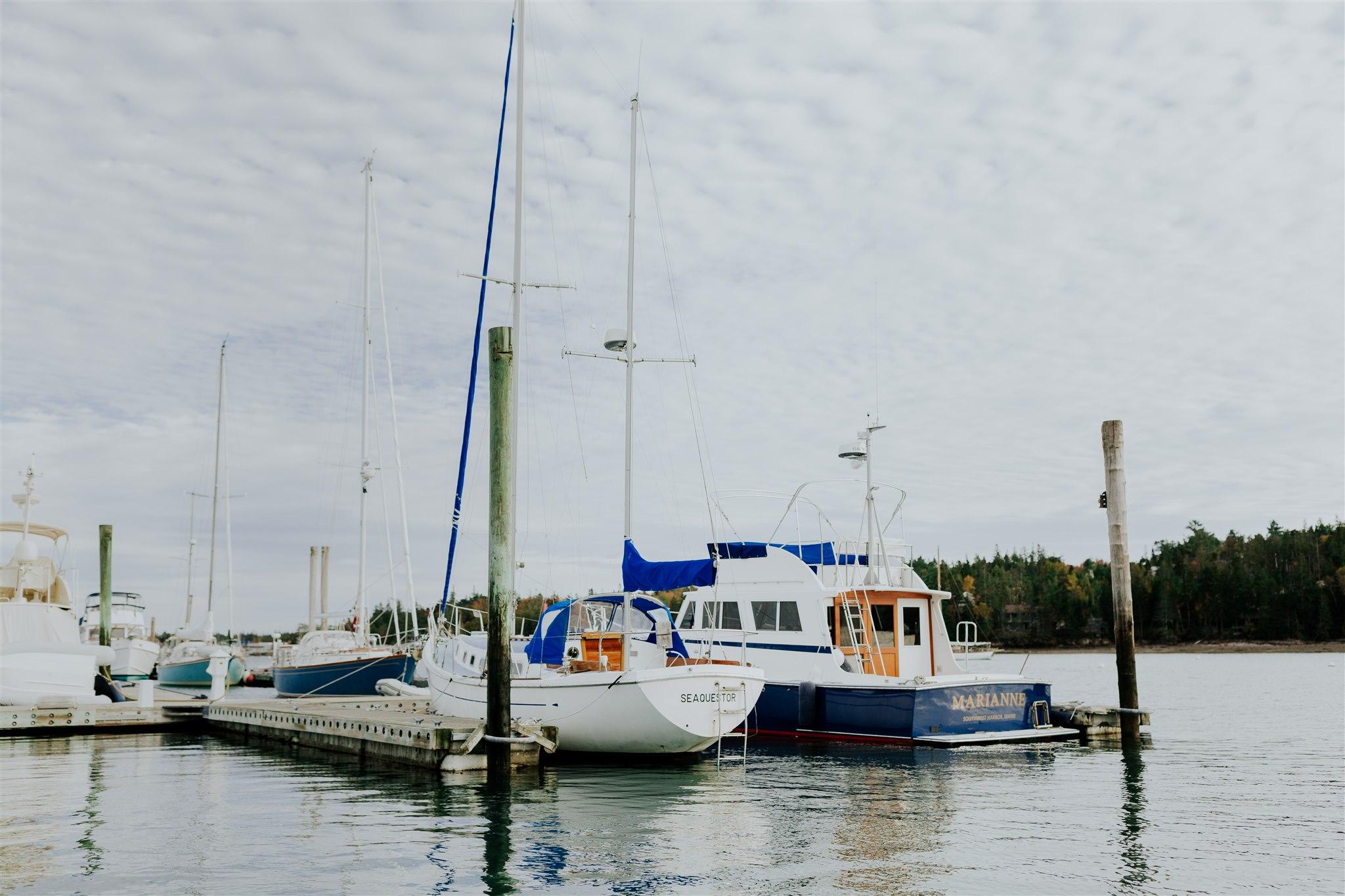 acadia national park sailing engagement