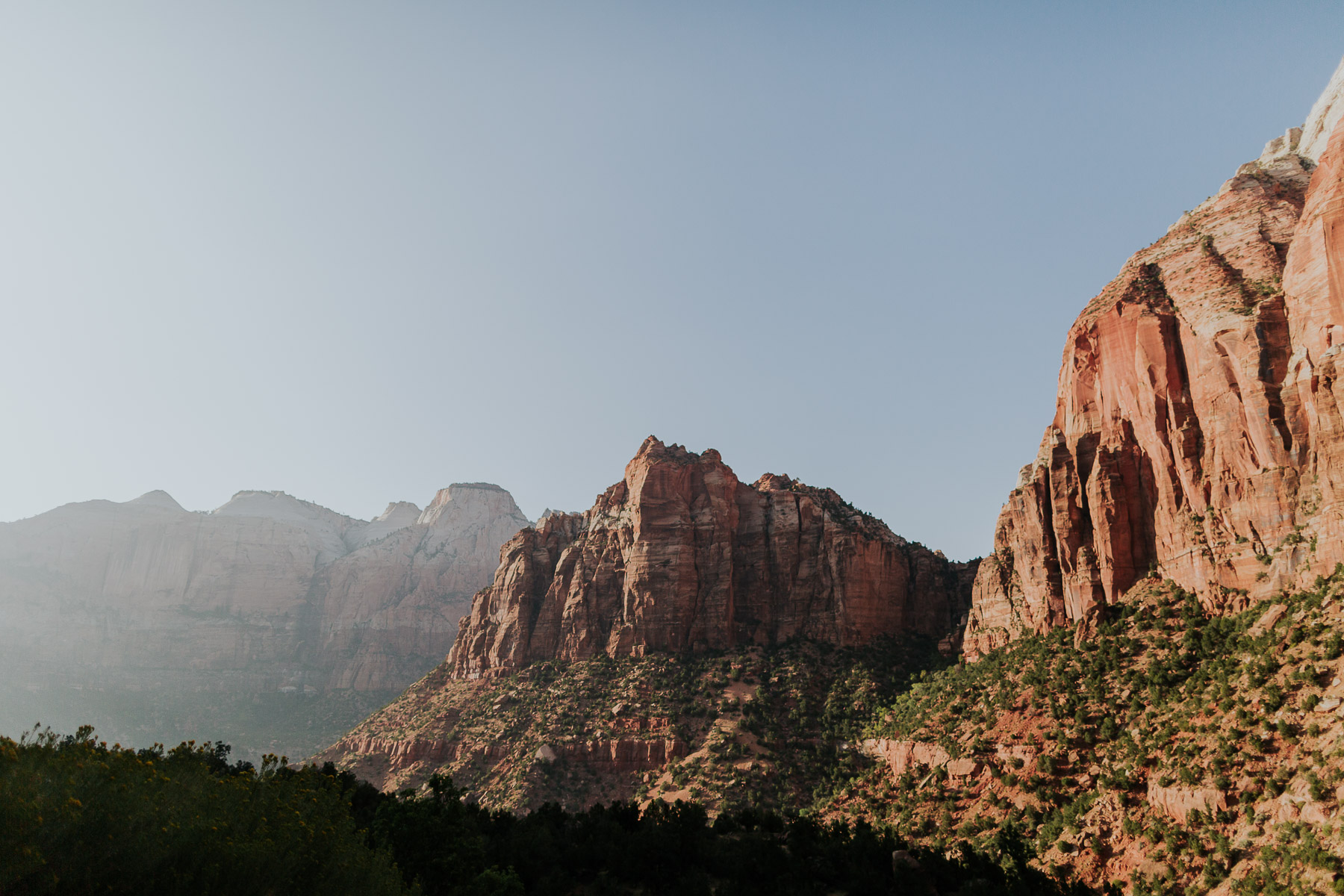 zion national park landscape elopement
